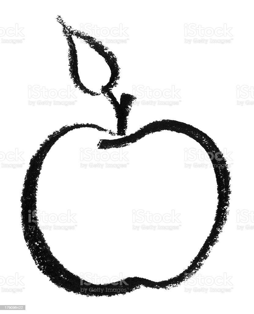 sketched apple vector art illustration