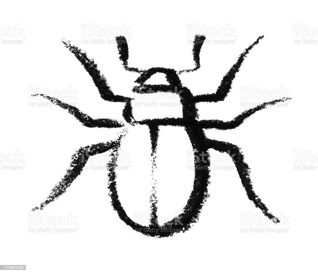 sketched beetle vector art illustration