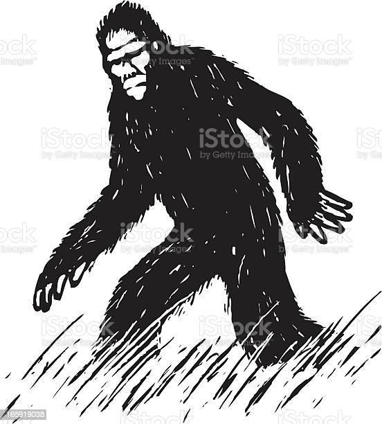 Sketchy bigfoot illustration id165919038?b=1&k=6&m=165919038&s=612x612&h=rrg rrogj77pcctyjdoien0kr2qgplrp  l5ycuzy7w=