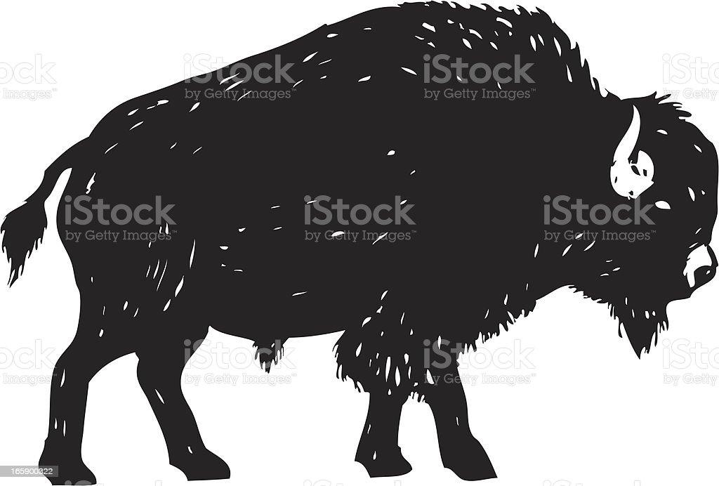 sketchy bison vector art illustration
