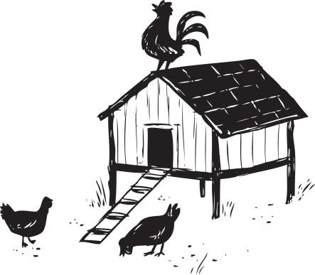 sketchy chicken coop