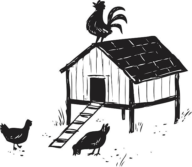 Sketchy Chicken Coop Vector Art Illustration