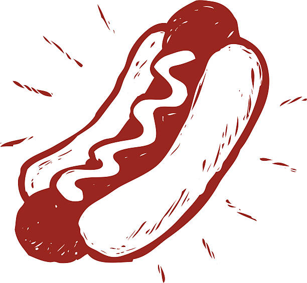 sketchy hot dog vector art illustration
