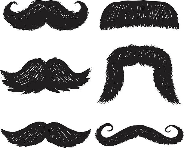 sketchy mustaches vector art illustration