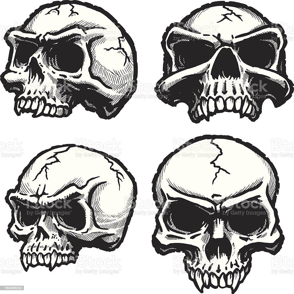 Skull 4-Pack vector art illustration