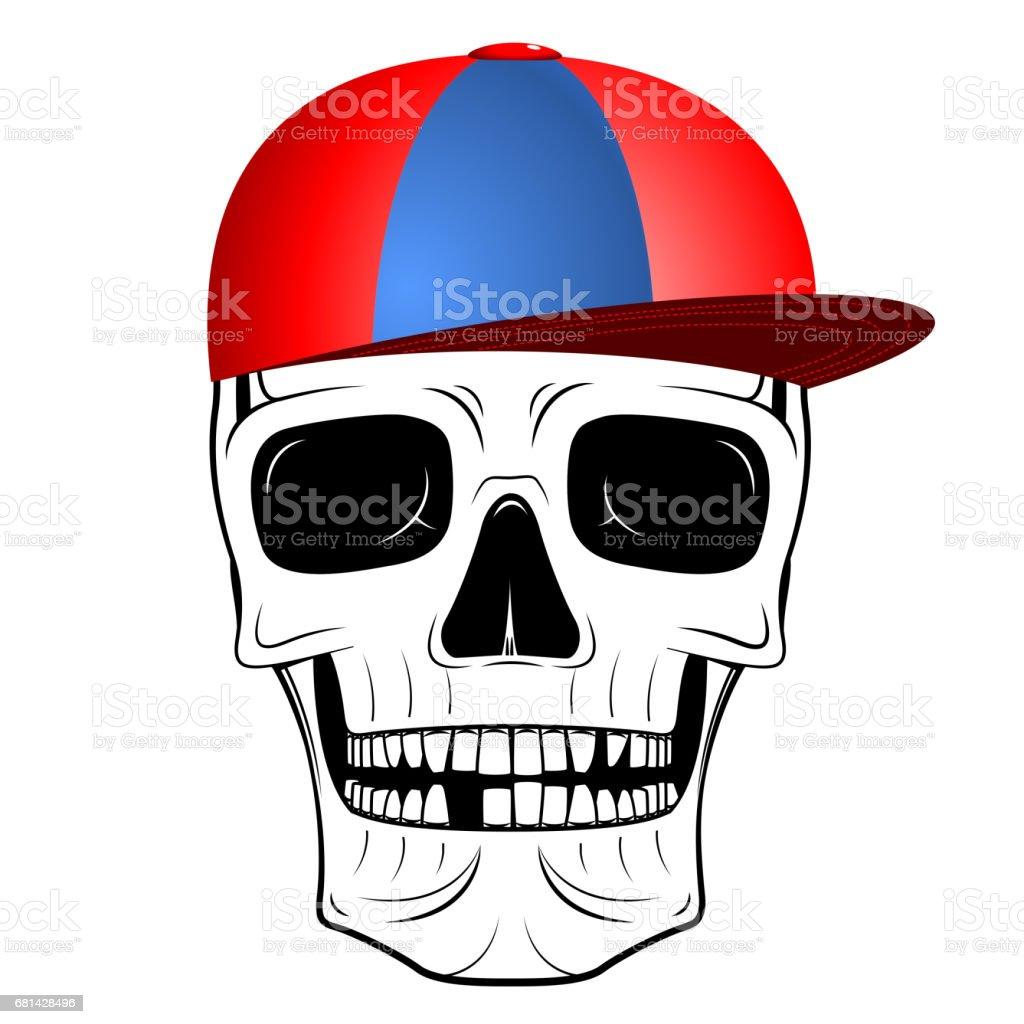 Skull Illustration Baseball Cap Stock Vector Art More Images Of