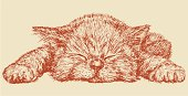 The vector drawing of a sleeping kitten in style of a sketch.