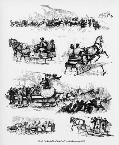 Best Horse Carriage Illustrations, Royalty-Free Vector