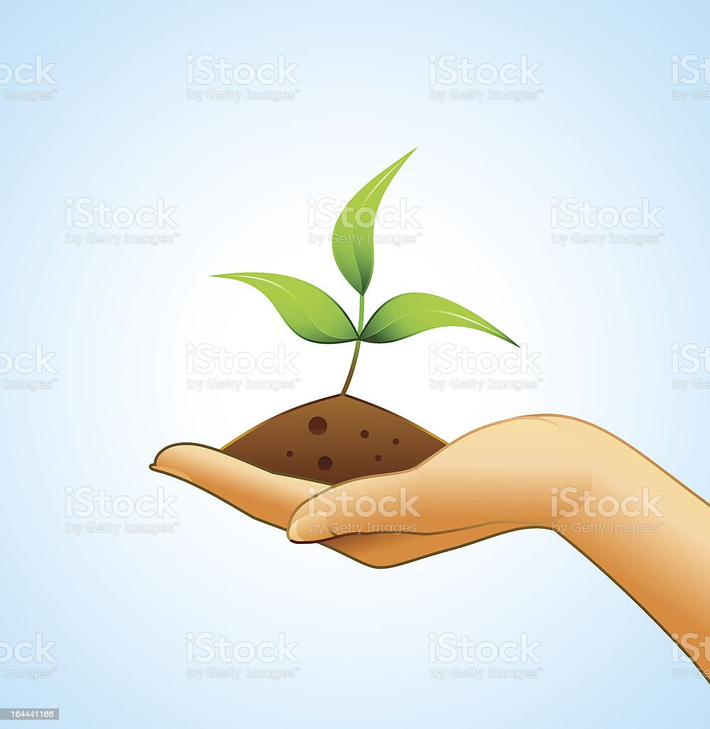 Small plant on woman's hand royalty-free stock vector art