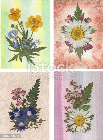 4 Small Pressed Flower Arrangements
