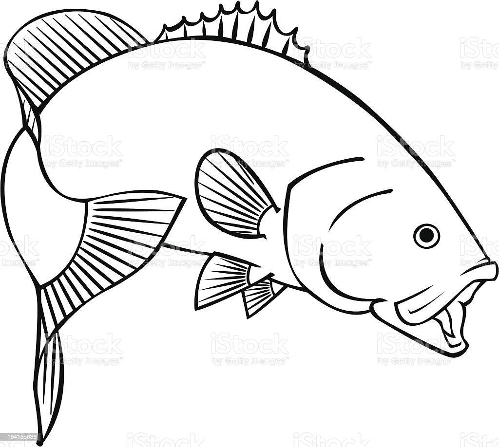 Smallmouth Bass Royalty Free Stock Vector Art Amp More Images Of Animal