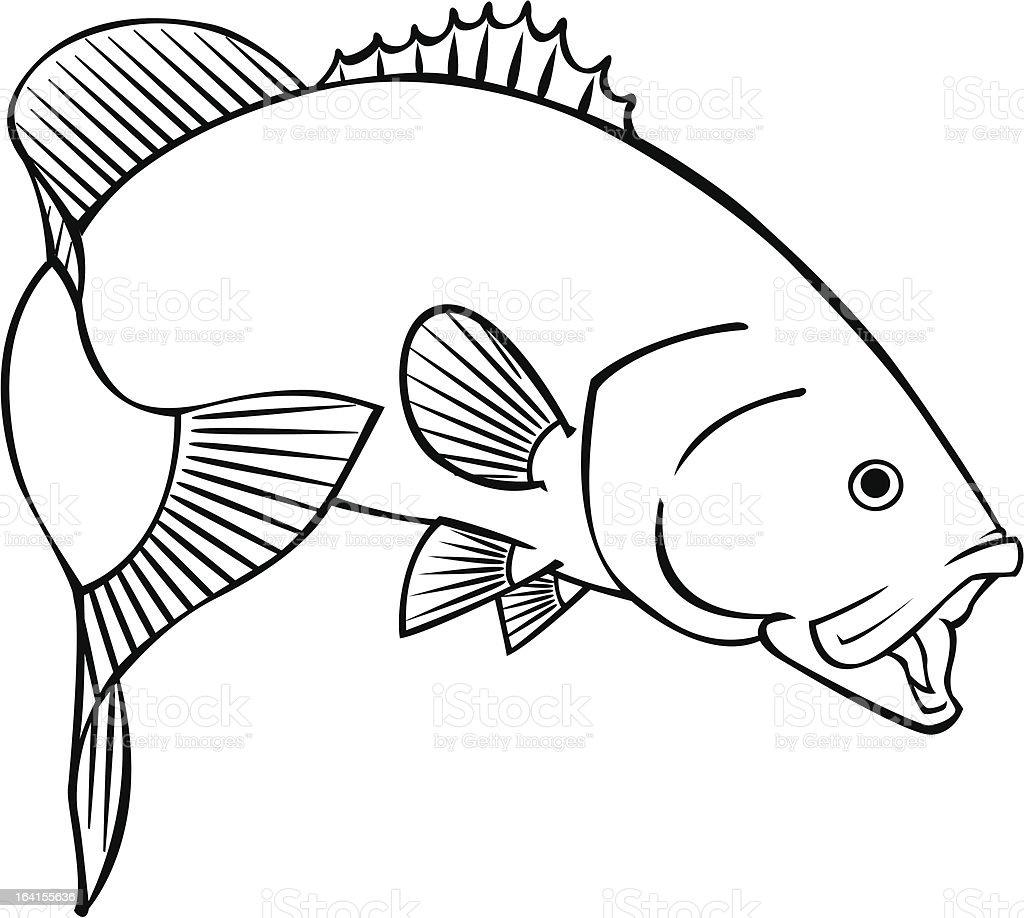 smallmouth bass vector art illustration