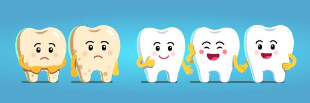 bildbanksillustrationer, clip art samt tecknat material och ikoner med leende och upprörd animerade tänder seriefigurer. friska leende vita tänder och upprörd tand med plack umgänge. tandvård och tandläkare blekning hand clipart. flat isolerade vektor - tandsten