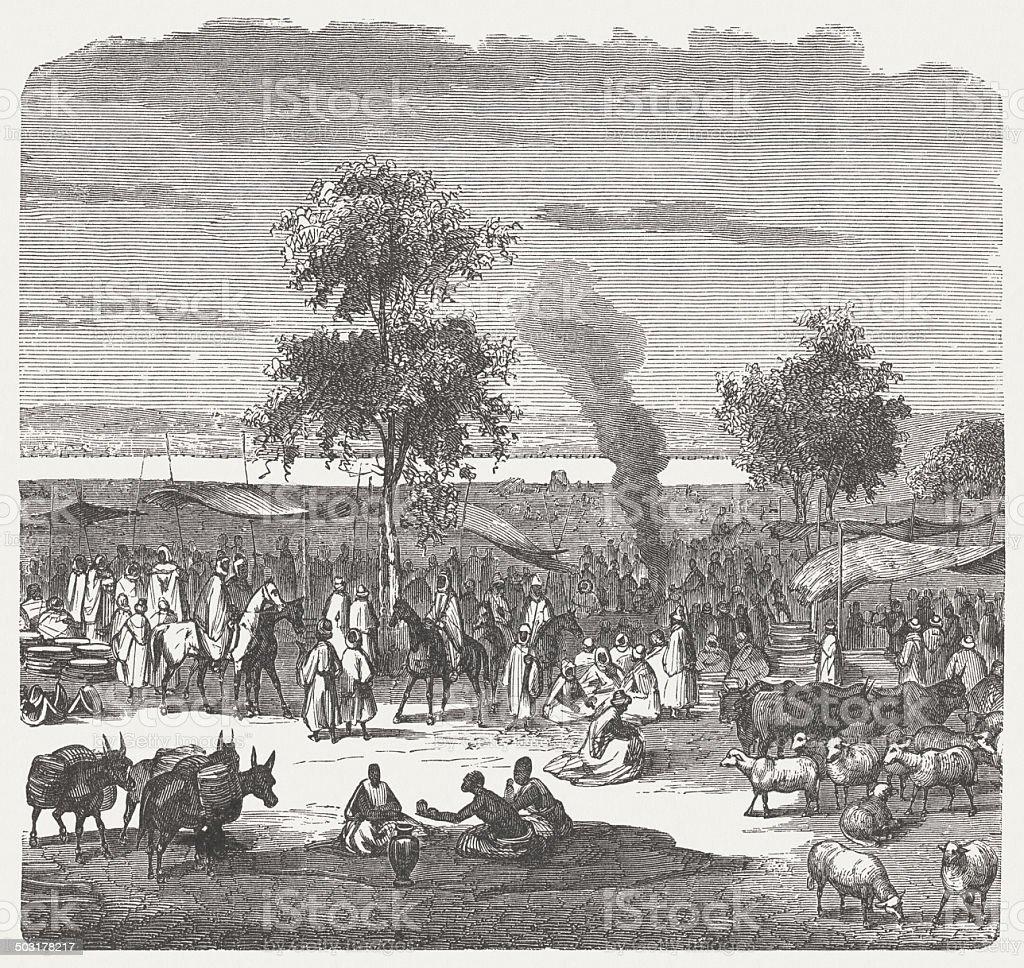 Sokoto (Sakkwato) in Nigeria, 19th century, wood engraving, published 1880 vector art illustration