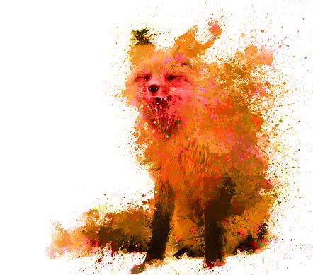 splash fox in orange color with spots