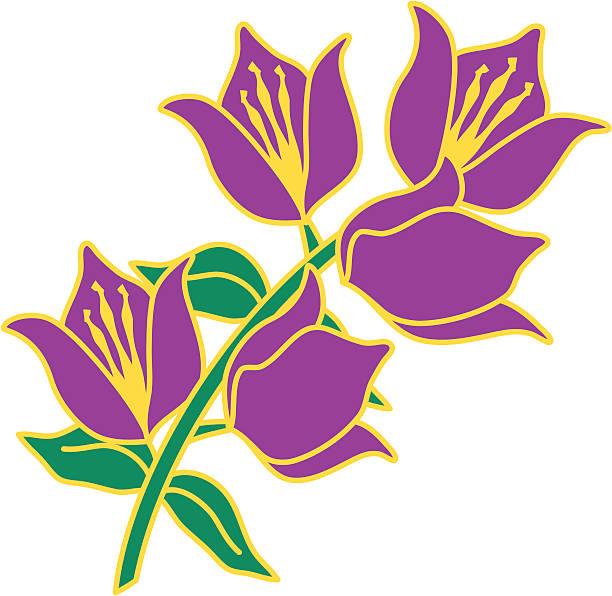 Sprig o derivación de púrpura flores de Santa Rita. - ilustración de arte vectorial