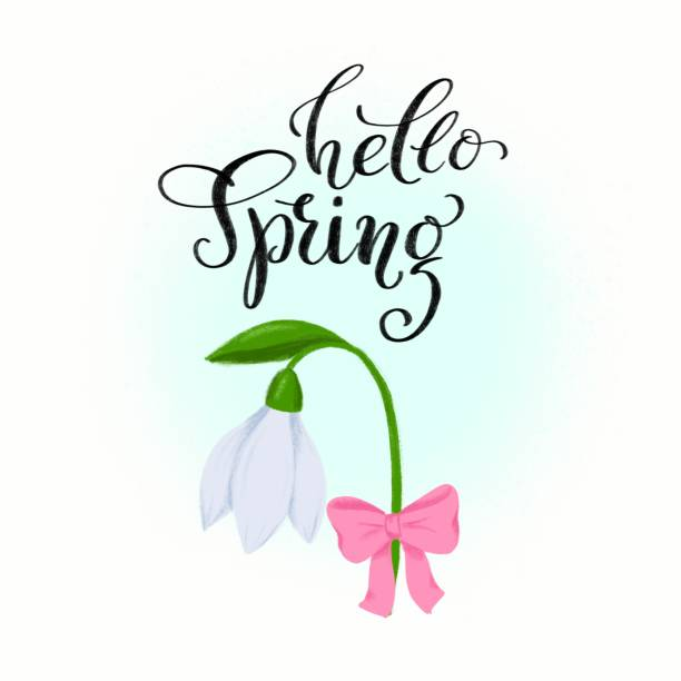 spring clip art - snowdrop flower with bow and hand drawn lettering hello spring for seasonal greeting card, poster, banner, fashion print, event invitation. floral composition with calligraphy - spring fashion stock illustrations, clip art, cartoons, & icons