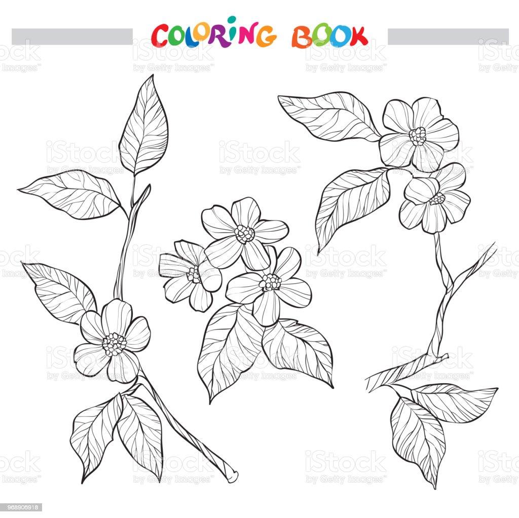 Bahar Bahçe Dalları Süslü Dekoratif Siyah Beyaz Resim Kitap Sayfa