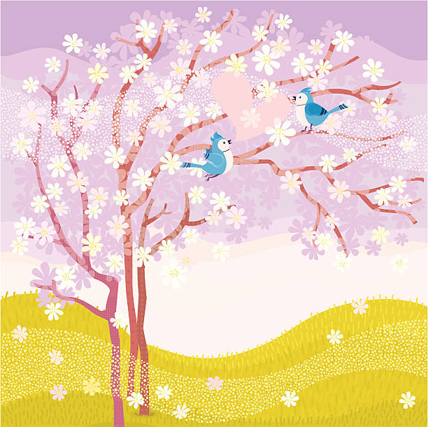 Spring Love Blue Jays couple sitting on a cherry blossom tree. Vector. flower part stock illustrations