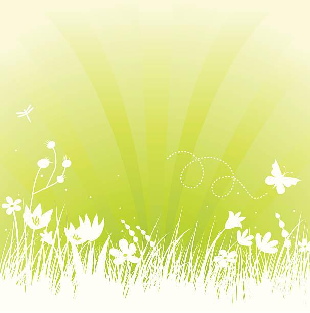 Frühling auf green – Vektorgrafik