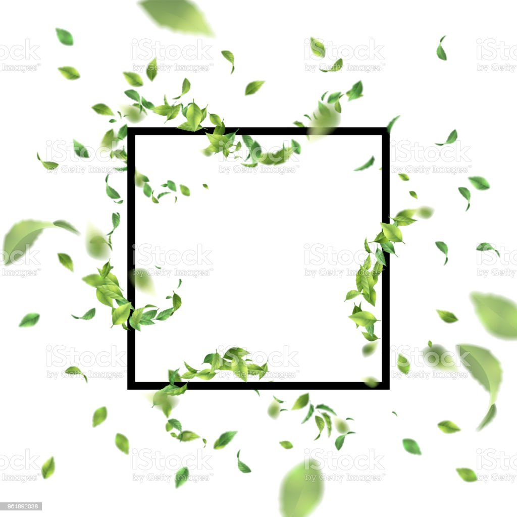 Square Frame with Leaves royalty-free square frame with leaves stock vector art & more images of abstract