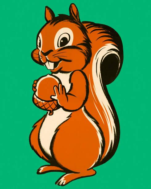 illustrations, cliparts, dessins animés et icônes de écureuil tenant un écrou - écureui