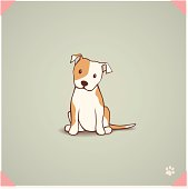 Staffordshire Bull Terrier Puppy