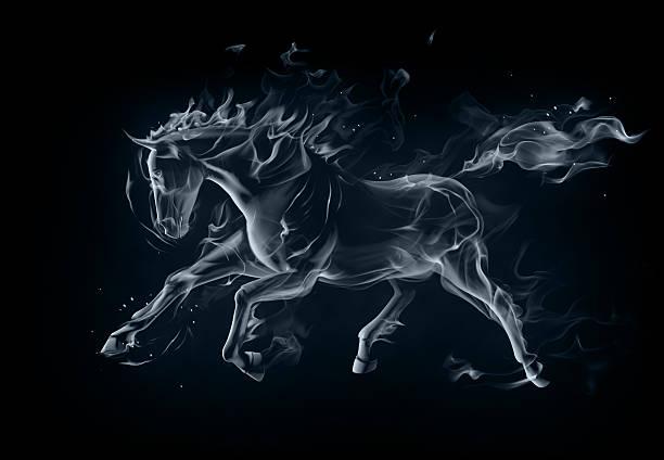 Stallion vector art illustration