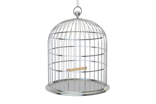 Steel bird cage with closed door, 3D rendering isolated on white background vector art illustration
