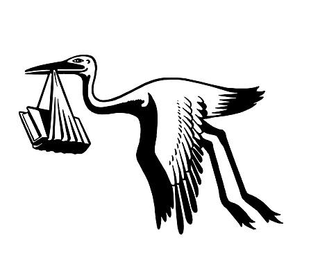 Stork Carying Books