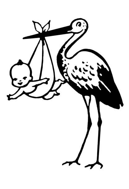 stockillustraties, clipart, cartoons en iconen met stork delivering baby - alleen één jongensbaby