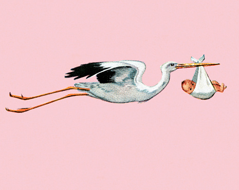 New baby stock illustrations