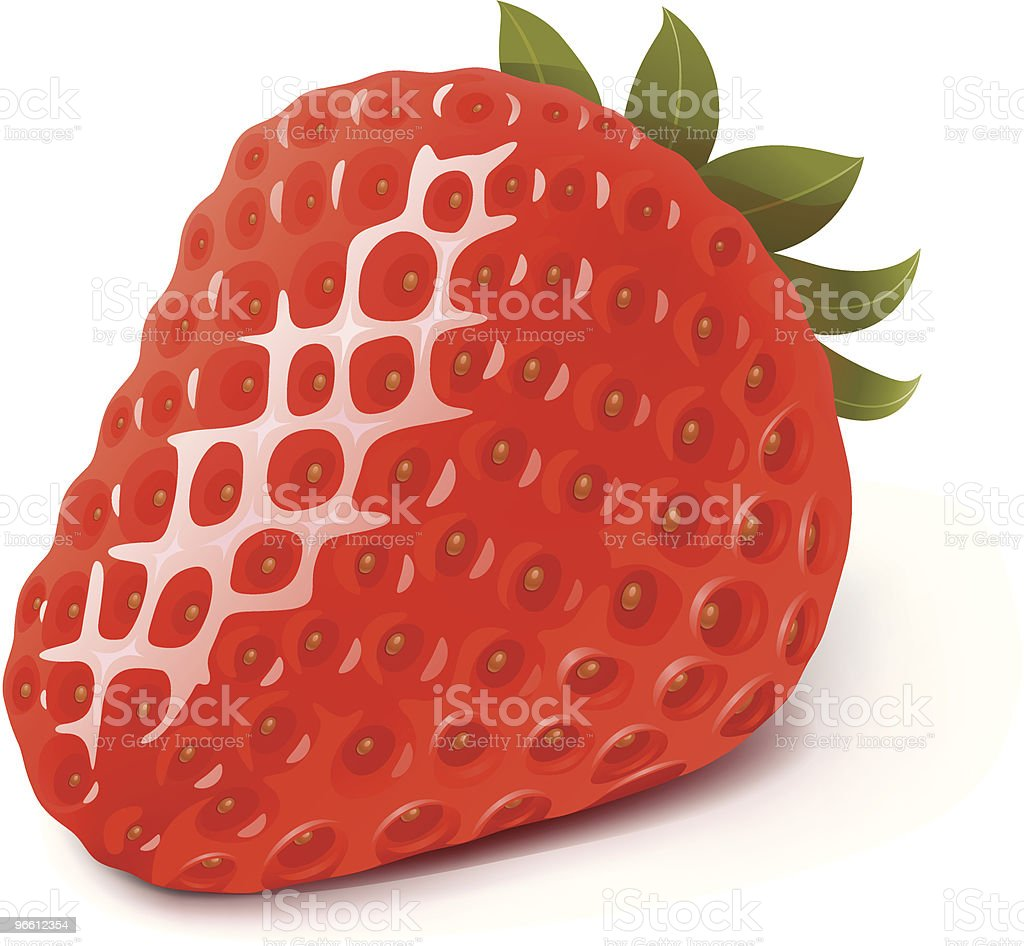 Strawberry vector art illustration