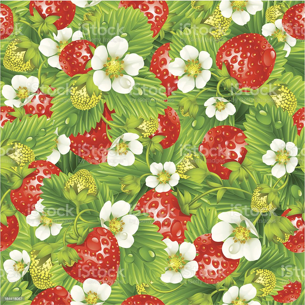 Strawberry seamless background royalty-free stock vector art