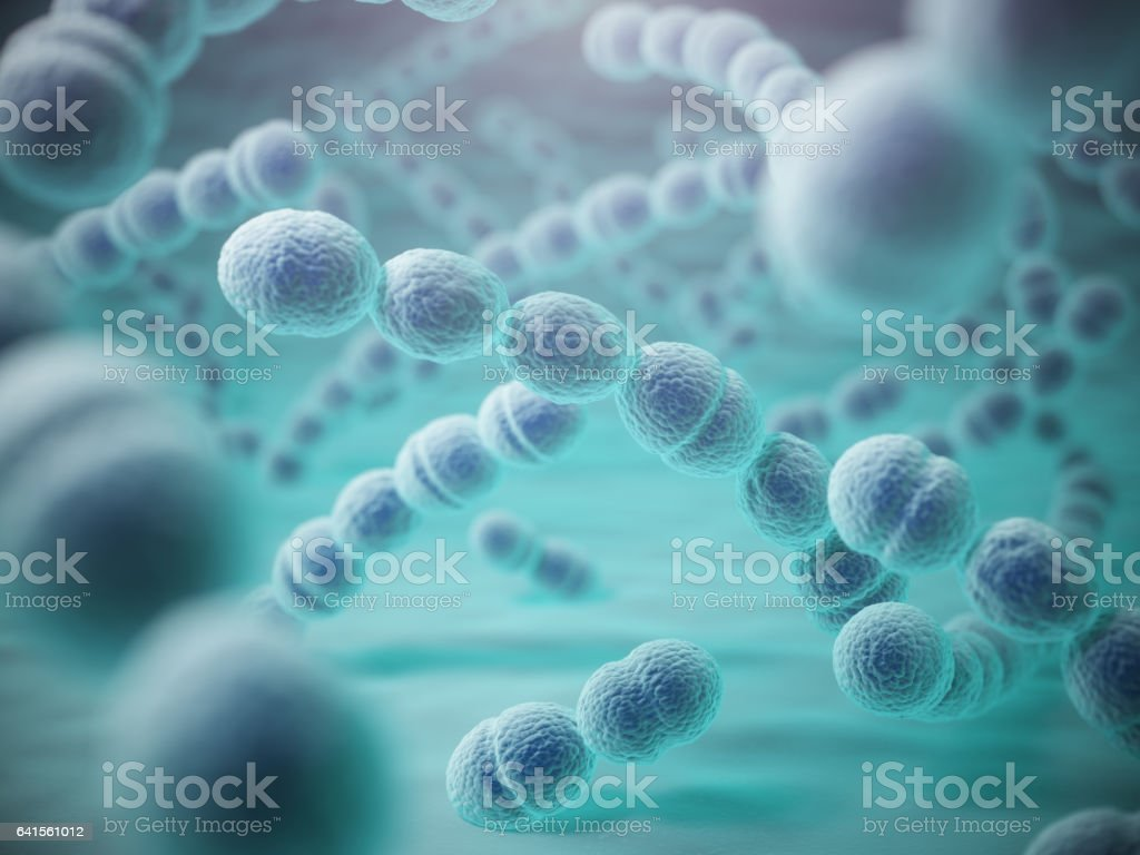 Streptococcus pneumoniae or pneumococcus bacterias vector art illustration