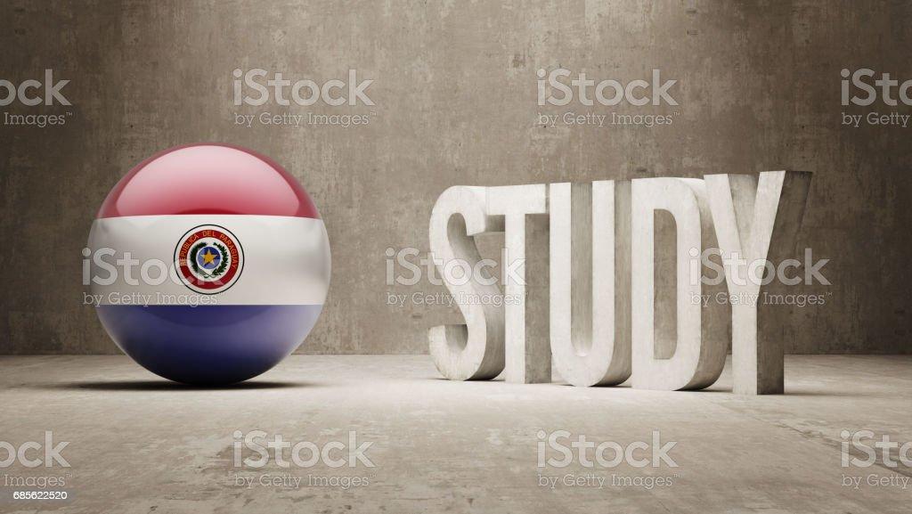 Study Concept 免版稅 study concept 向量插圖及更多 paraguayan flag 圖片