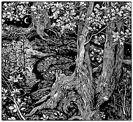 """A complicated wood engraving by Mary Jane Newill entitled """"A Study of Trees"""" showing gnarled tree trunks, oak leaves and bushes on a hillside with a crescent moon and stars in the background."""