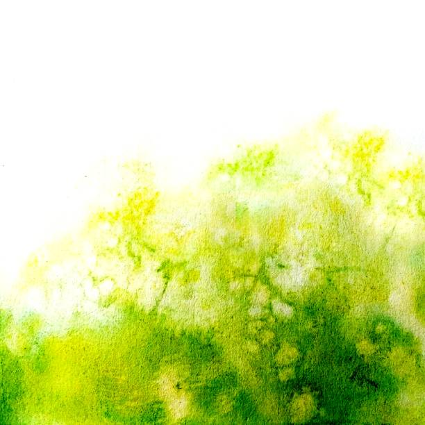 Stylish and harmonious watercolor texture. The green mood of spring, blooming, harmony and joy. Stylish and harmonious watercolor texture. The green mood of spring, blooming, harmony and joy. Colours tender spring or summer greens, fresh and energizing. moss stock illustrations