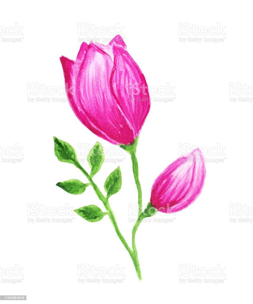 rose gemalt einfach