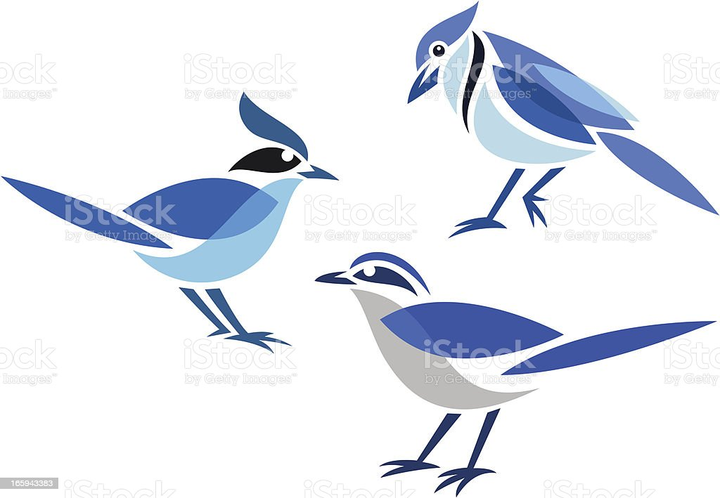 royalty free blue jay bird clip art vector images illustrations rh istockphoto com baby blue jay clipart baby blue jay clipart