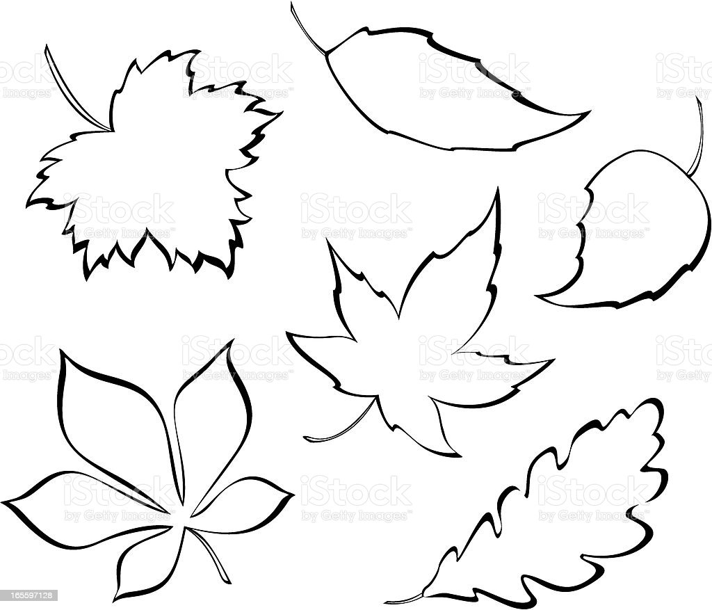 Stylized Leaves Royalty Free Stock Vector Art