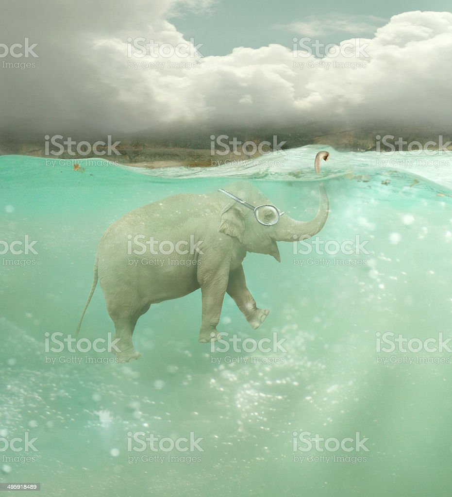 Submarine elephant vector art illustration
