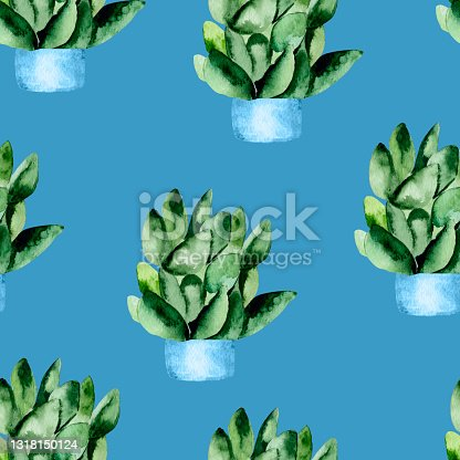 istock Succulents in pots on a blue background watercolor seamless pattern. 1318150124