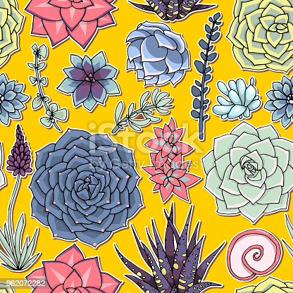 Succulents seamless pattern. Succulent ornament.  Natural composition. Colored succulents and cactus floral print. Hand drawn art work.