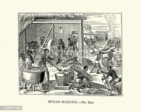 Vintage engraving of Sugar making in Cuba, 16th Century.  After Theodor de Bry, 16th Century