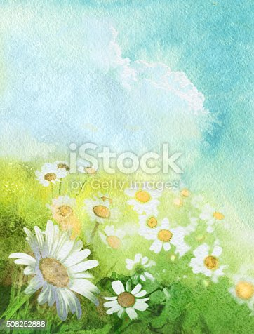 camomile field on a clear day, watercolor