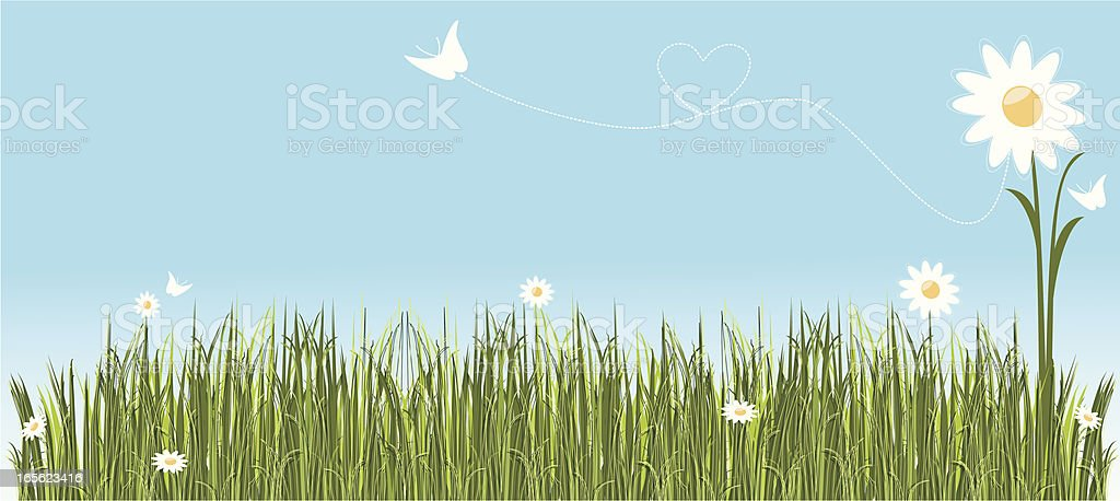 Summer Banner royalty-free summer banner stock vector art & more images of blade of grass