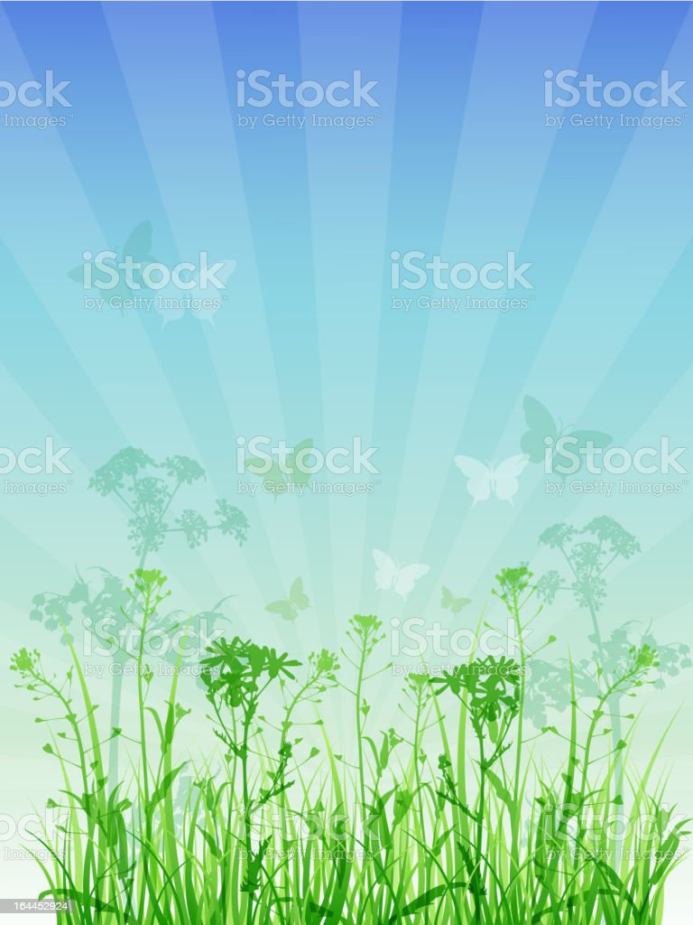 summer floral background royalty-free summer floral background stock vector art & more images of backgrounds