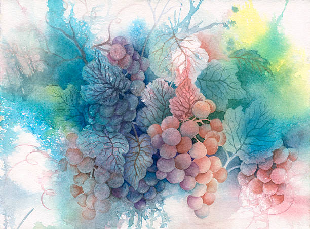 Summer Grapes vector art illustration