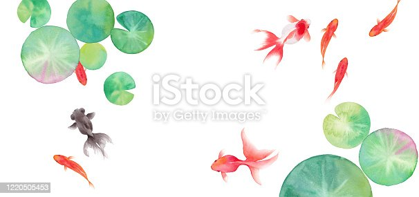 Summer image background composed of goldfish and water lily leaves, watercolor illustration